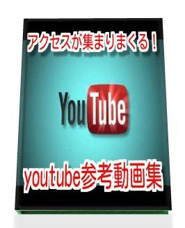 動画参考ha