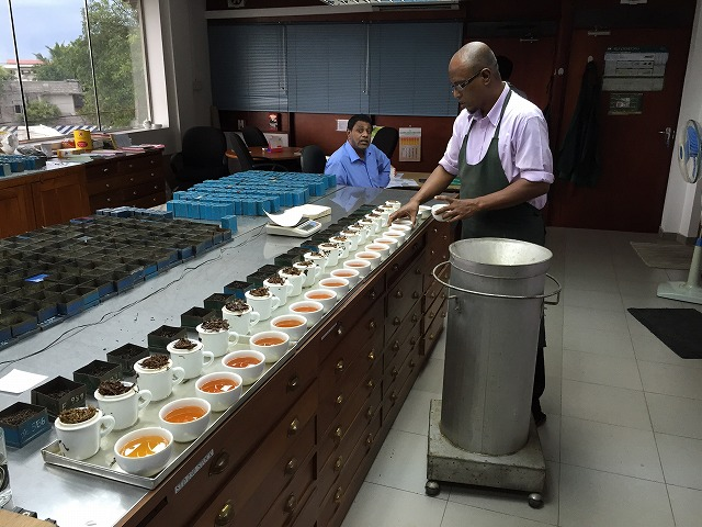 紅茶サンプル20種類