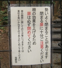 katakuri150308-104.jpg