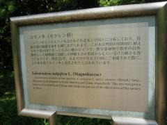 koishikawa150504-123.jpg