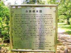 koishikawa150504-125.jpg