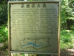 koishikawa150504-137.jpg