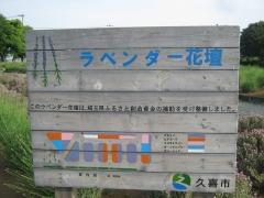 kuki-shoubu150517-102.jpg
