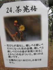 oomiyadaini050307-124.jpg