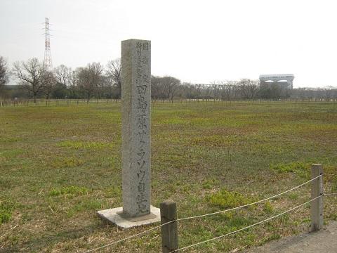 sakurasou150315-102.jpg