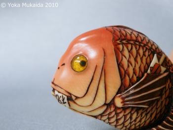 © 陽佳 2010「祝鯛」DH000104.jpg