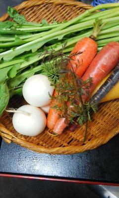 150226三浦野菜