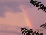 虹が (1)