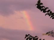 虹が (2)