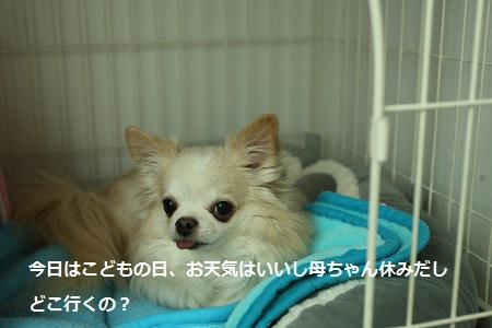 IMG_5755.jpg