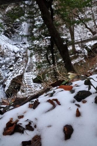 3白猪の滝15.03.11