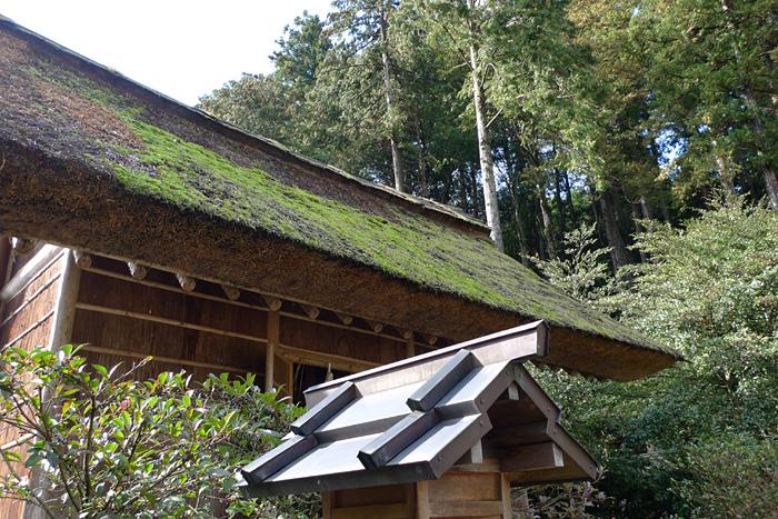 出雲の神社巡り  熊野大社  16