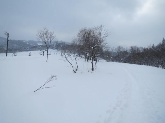 12月30日 キロロゲレンデ横のトレース