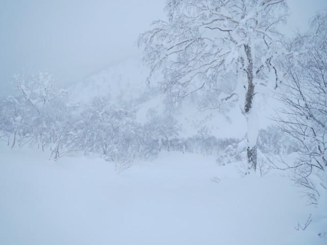 12月30日 1116峰から滑った斜面