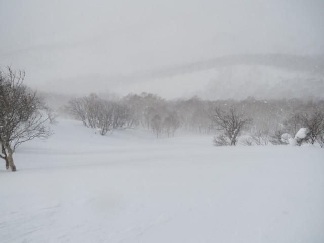 01月03日 中尾根緩斜面