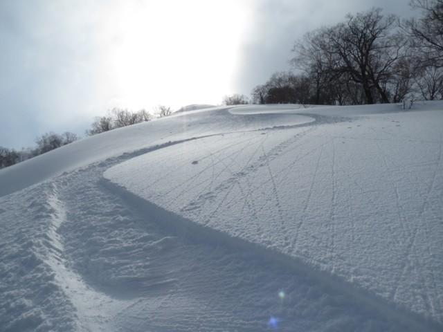 2月11日 雪は良し