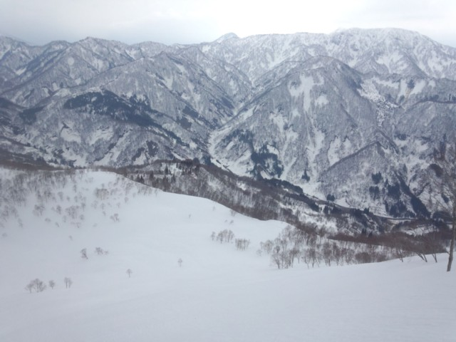 3月29日 東峰から東斜面