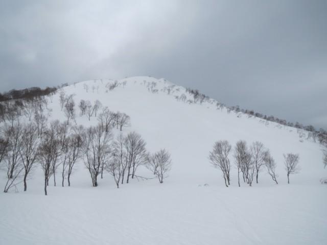 3月29日 面ツルストップスノー