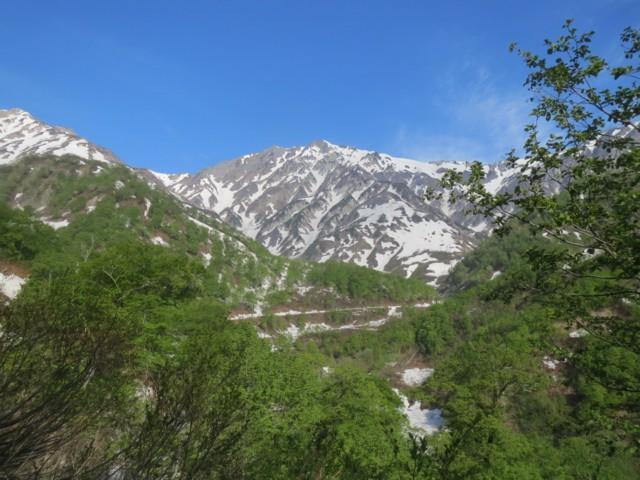 5月24日 好天白馬岳