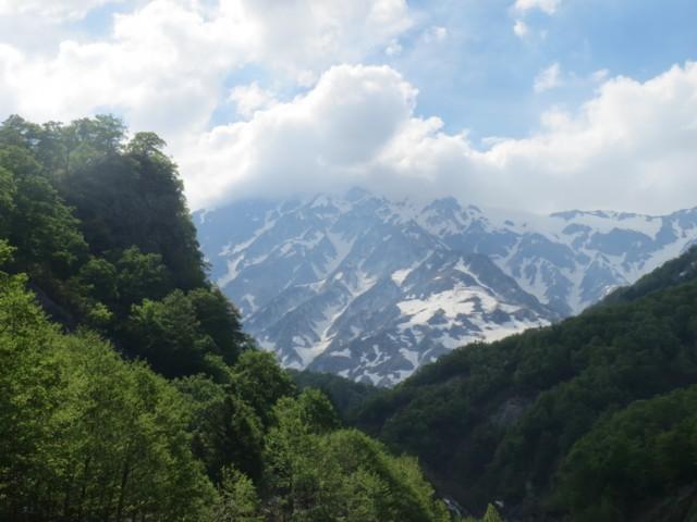 5月24日 白馬岳ピークは雲の中