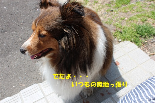 IMG_5765.jpg