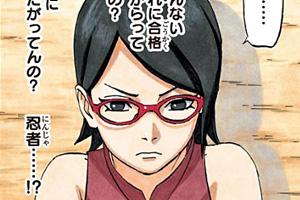 NARUTO外伝~七代目火影と緋色の花つ月~700+1話 ネタバレ感想