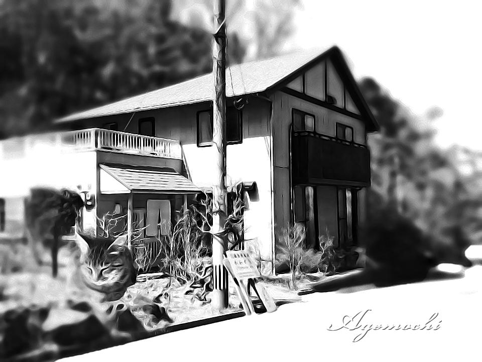 kawaguchi2_shop.jpg