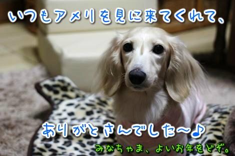 20141231241915.jpg