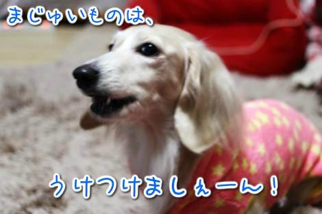 20150128164210.jpg