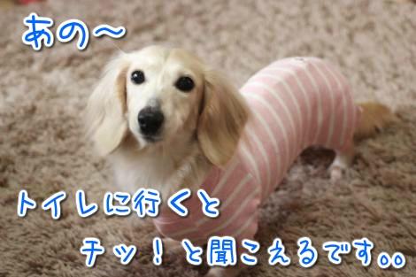 20150301133329.jpg