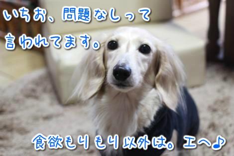 20150304135612.jpg