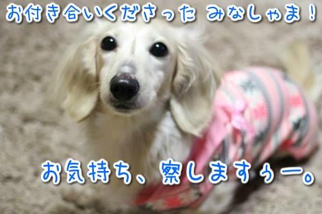 20150323061433.jpg