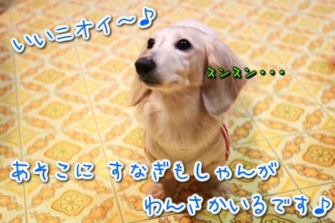 20150325195237.jpg