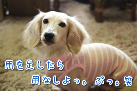 20150326100220.jpg