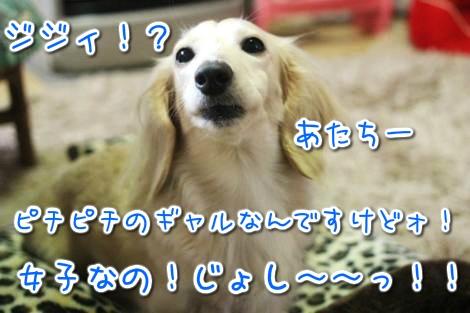 20150327102020.jpg