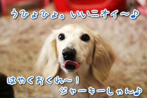 20150329093653.jpg