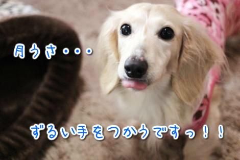 20150330020847.jpg