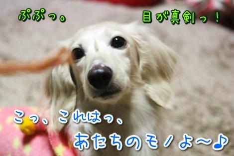20150414032922.jpg