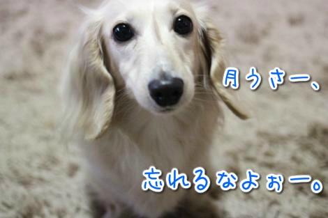 20150512175509.jpg