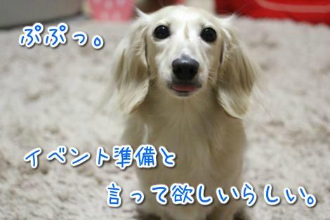 20150518022647.jpg