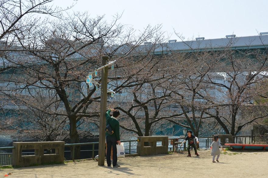 27年春・南天満公園 (11)
