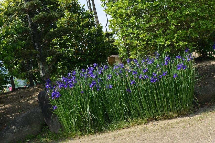 リサイクル日本庭園 (3)