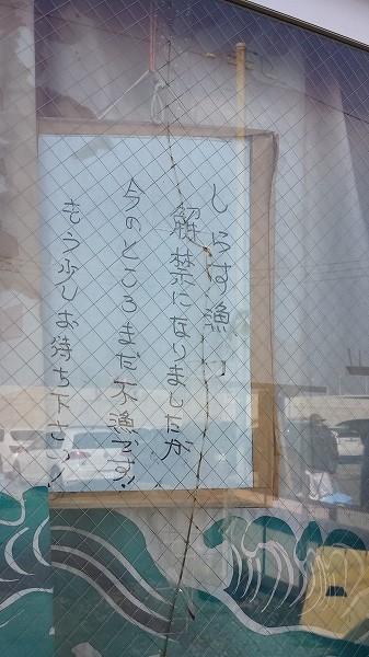 shirasu.jpg