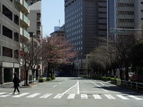 kuroganetokujoro04.jpg