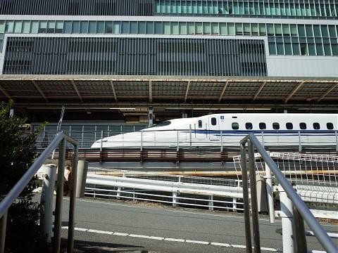 maguroya24.jpg