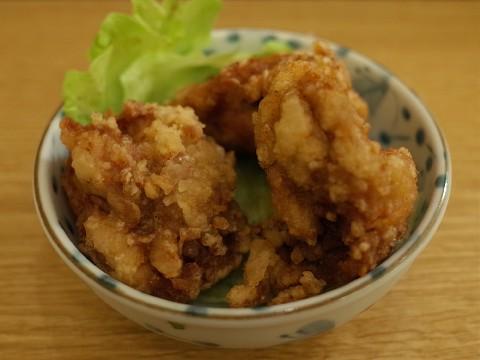 opentorifuji04.jpg