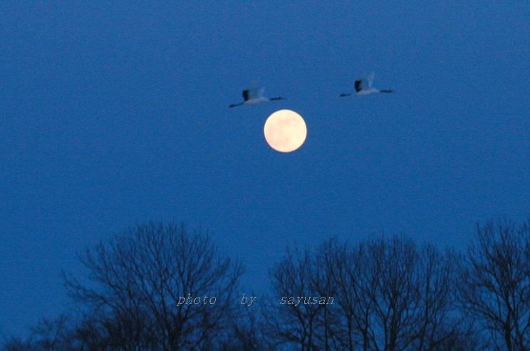 丹頂満月及び夕焼け 011-0a1