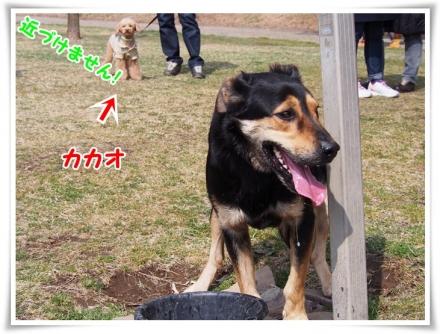 ⑨0321(土)P3220088