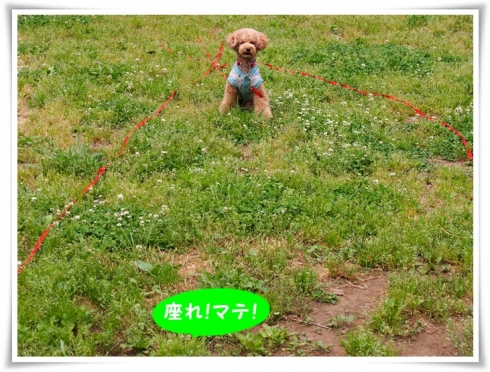 ①0505(火)P5051004