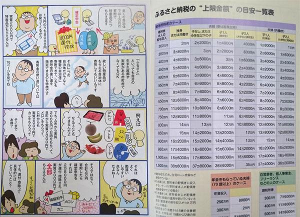 ふるさと納税超入門 2015 税制改正版 (別冊宝島 2325)